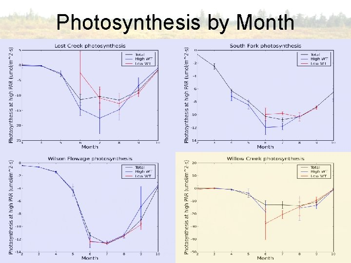 Photosynthesis by Month