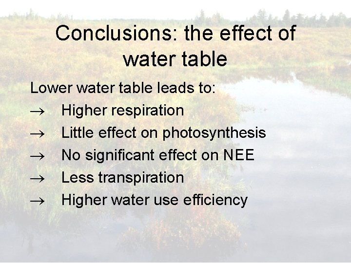 Conclusions: the effect of water table Lower water table leads to: Higher respiration Little