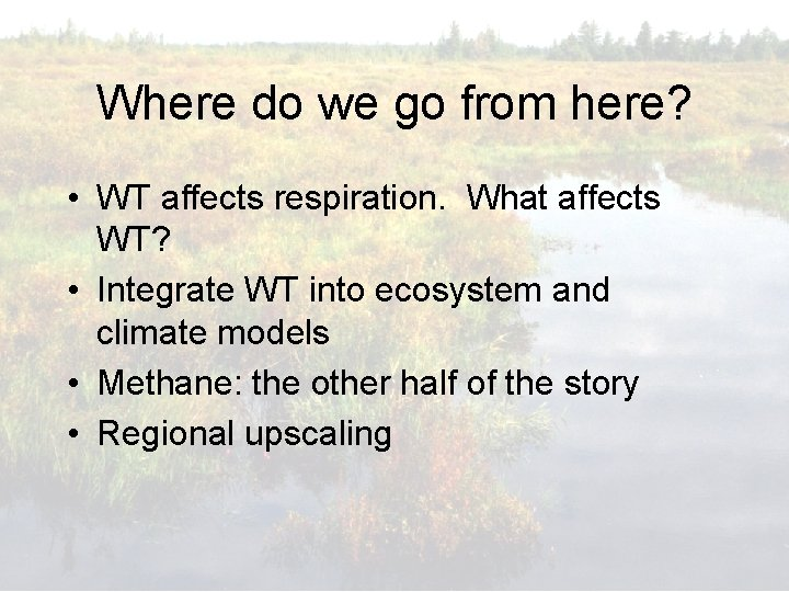 Where do we go from here? • WT affects respiration. What affects WT? •