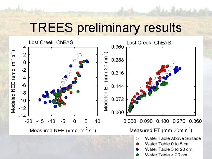 TREES preliminary results