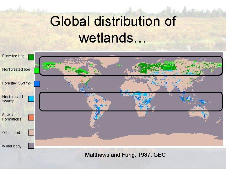 Global distribution of wetlands… Forested bog Nonforested bog Forested Swamp Nonforested swamp Alluvial Formations