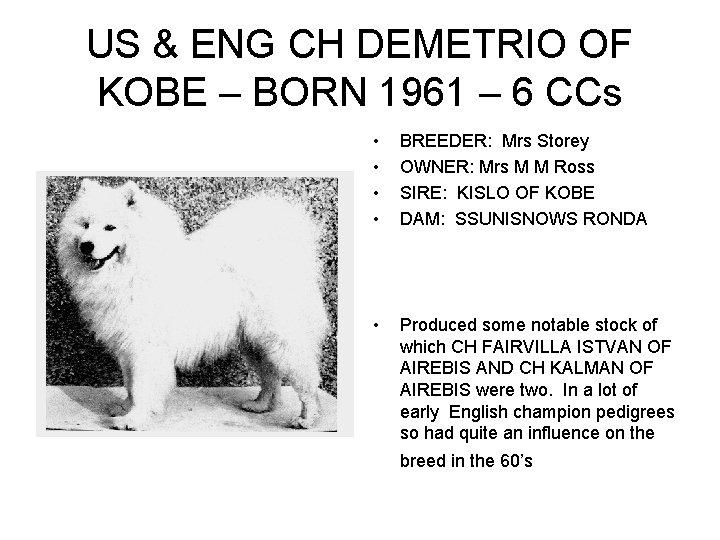 US & ENG CH DEMETRIO OF KOBE – BORN 1961 – 6 CCs •