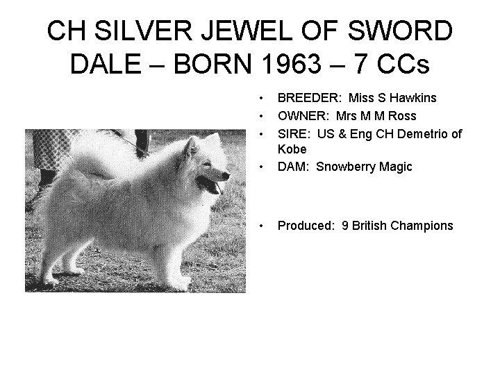 CH SILVER JEWEL OF SWORD DALE – BORN 1963 – 7 CCs • •