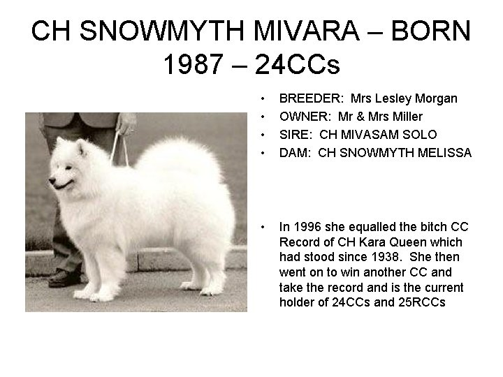CH SNOWMYTH MIVARA – BORN 1987 – 24 CCs • • BREEDER: Mrs Lesley