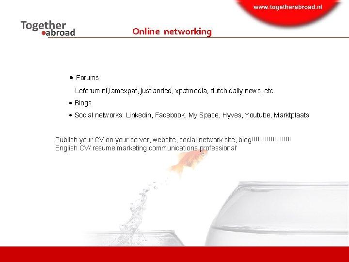 Online networking Forums Leforum. nl, Iamexpat, justlanded, xpatmedia, dutch daily news, etc Blogs Social
