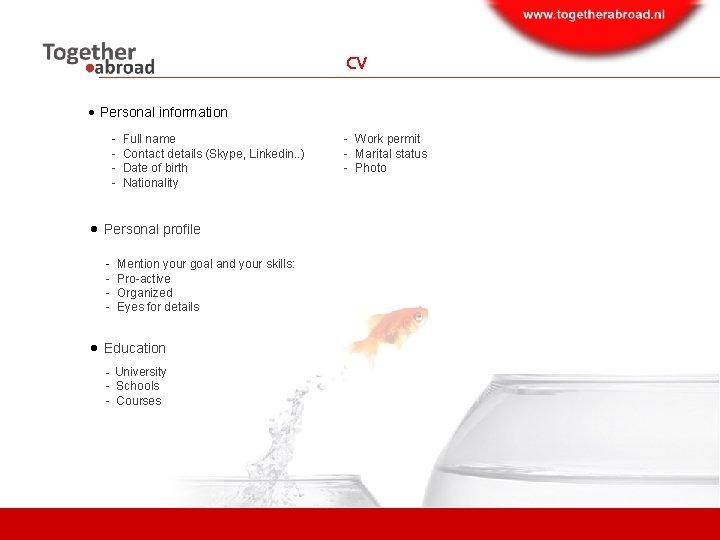 CV Personal information - Full name - Contact details (Skype, Linkedin. . ) -