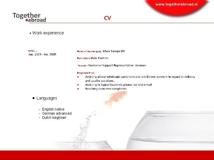 CV Work experience Languages - English native - German advanced - Dutch beginner