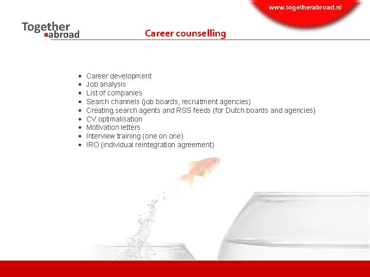 Career counselling Career development Job analysis List of companies Search channels (job boards, recruitment