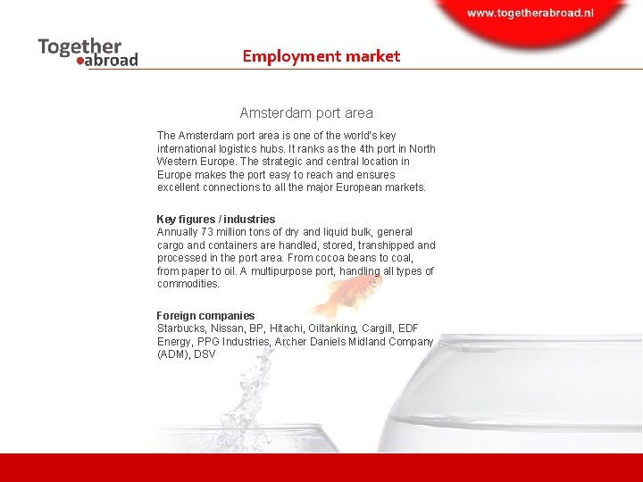 Employment market Amsterdam port area The Amsterdam port area is one of the world's