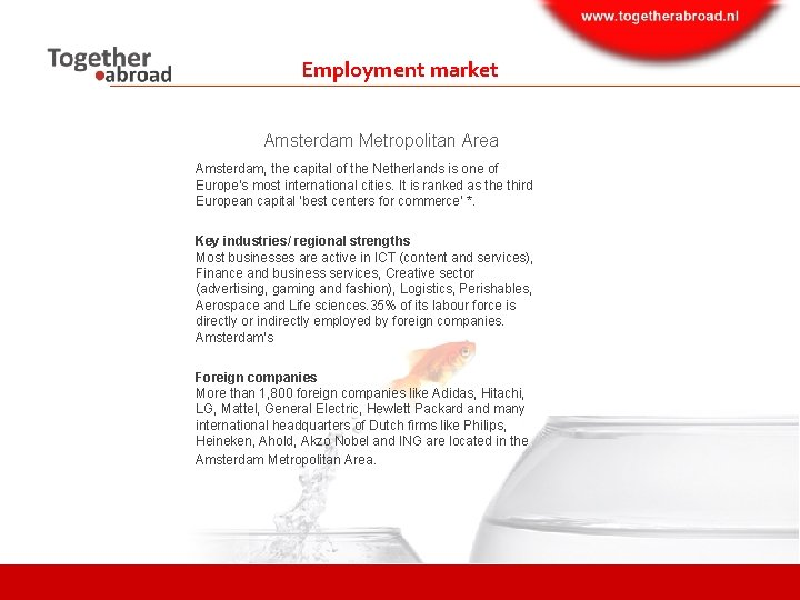 Employment market Amsterdam Metropolitan Area Amsterdam, the capital of the Netherlands is one of