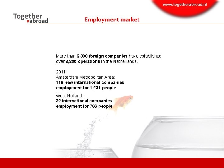Employment market More than 6, 300 foreign companies have established over 8, 800 operations