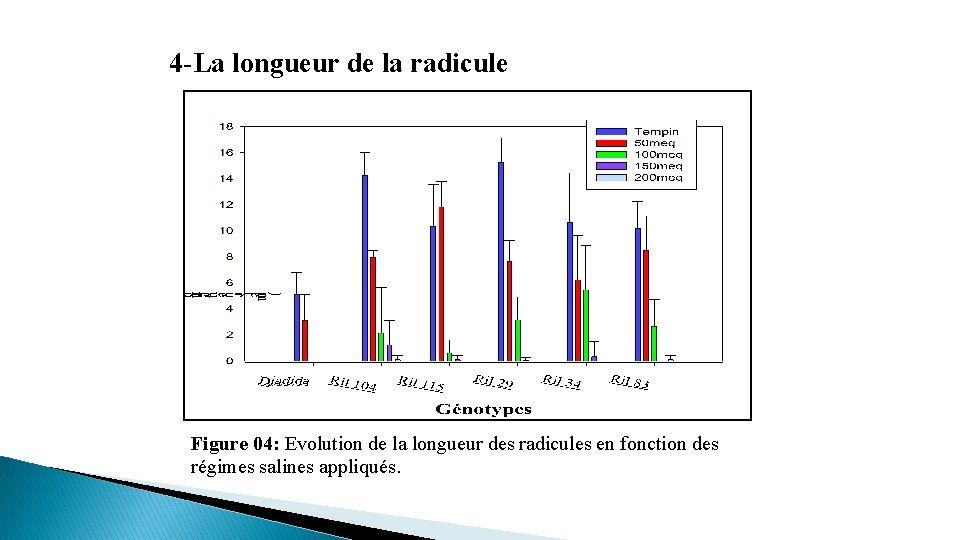 4 -La longueur de la radicule Figure 04: Evolution de la longueur des radicules