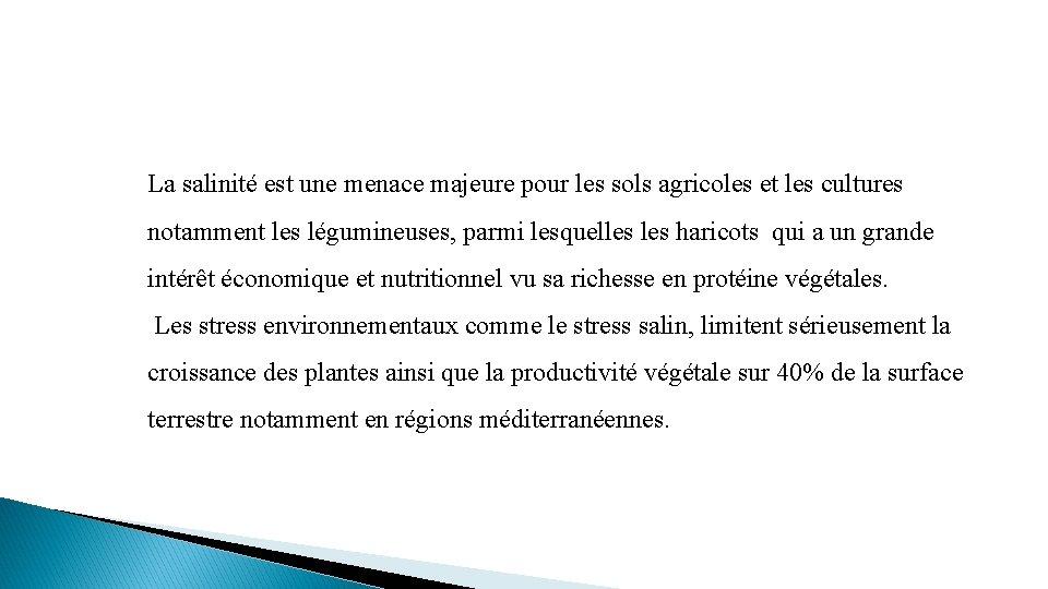 La salinité est une menace majeure pour les sols agricoles et les cultures notamment
