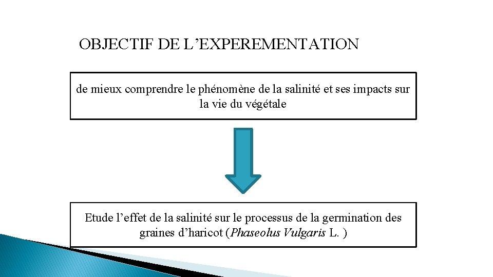 OBJECTIF DE L'EXPEREMENTATION de mieux comprendre le phénomène de la salinité et ses impacts