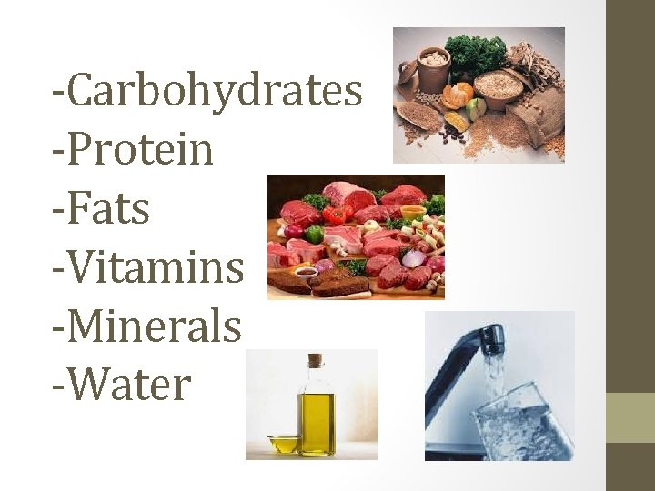 -Carbohydrates -Protein -Fats -Vitamins -Minerals -Water