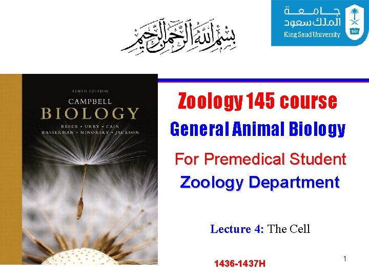 Zoology 145 course General Animal Biology For Premedical Student Zoology Department Lecture 4: The