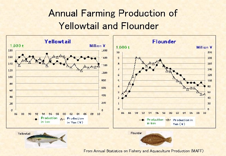 Annual Farming Production of Yellowtail and Flounder   Yellowtail Flounder From Annual Statistics on