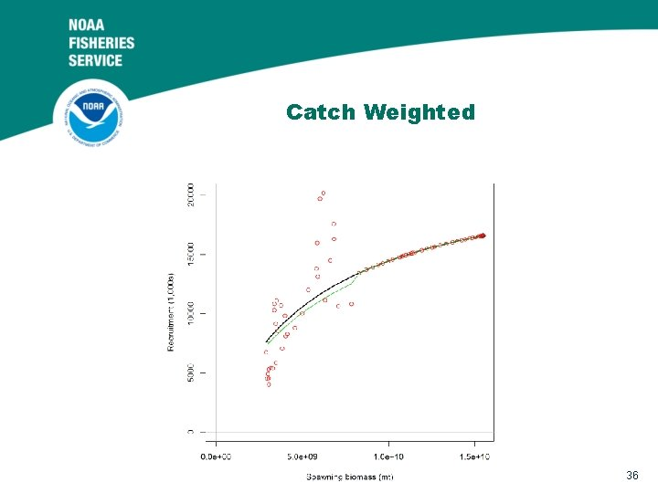 Catch Weighted 36