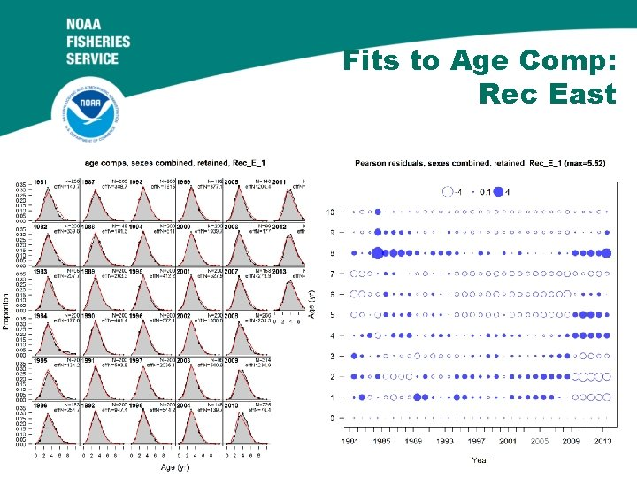 Fits to Age Comp: Rec East 58