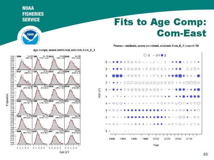 Fits to Age Comp: Com-East 60