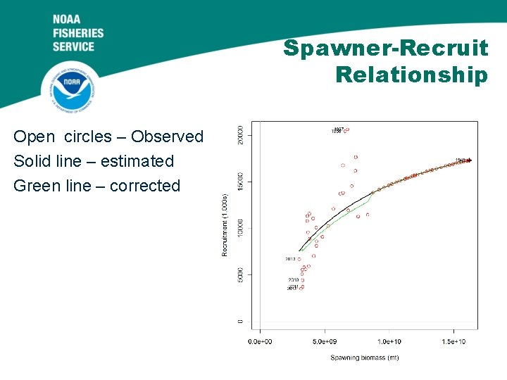 Spawner-Recruit Relationship Open circles – Observed Solid line – estimated Green line – corrected