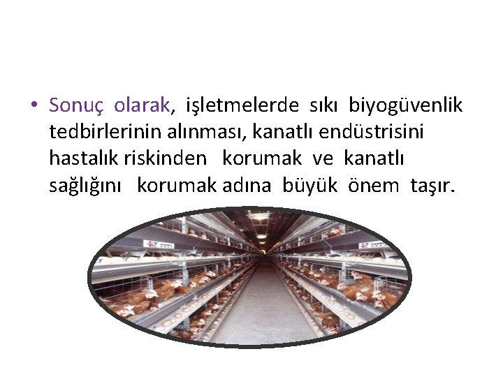 • Sonuç olarak, işletmelerde sıkı biyogüvenlik tedbirlerinin alınması, kanatlı endüstrisini hastalık riskinden korumak