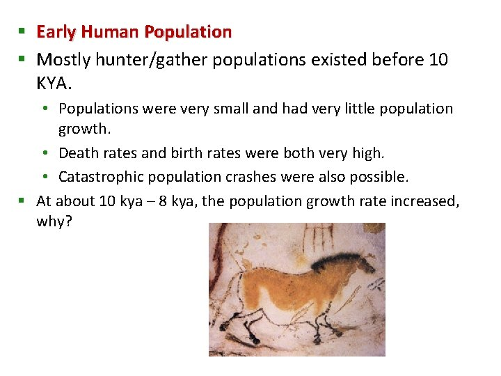 § Early Human Population § Mostly hunter/gather populations existed before 10 KYA. • Populations