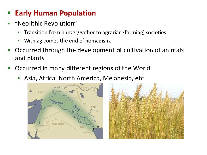 """§ Early Human Population § """"Neolithic Revolution"""" • Transition from hunter/gather to agrarian (farming)"""