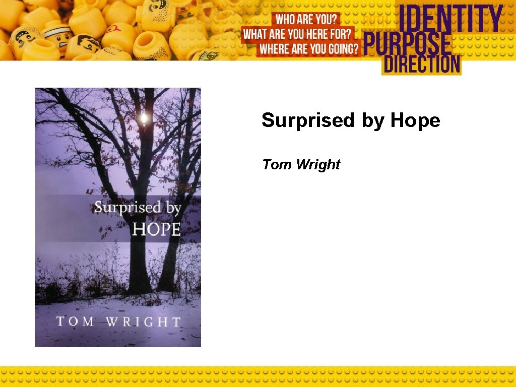 Surprised by Hope Tom Wright
