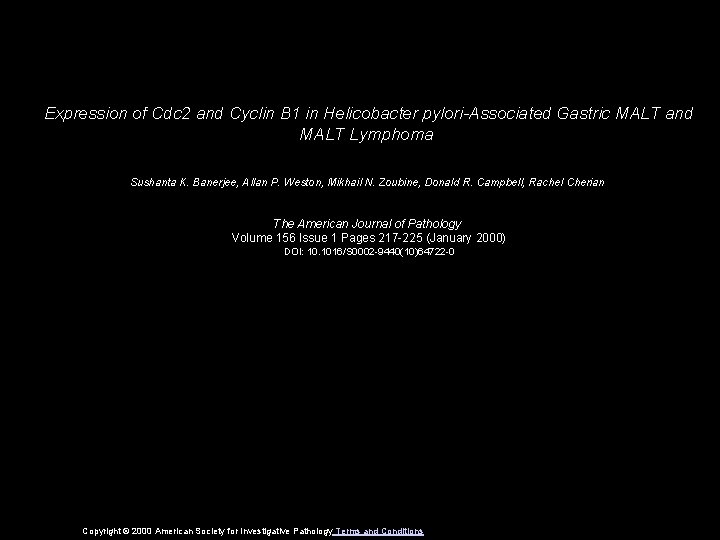 Expression of Cdc 2 and Cyclin B 1 in Helicobacter pylori-Associated Gastric MALT and