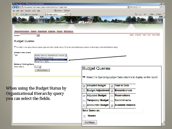 When using the Budget Status by Organizational Hierarchy query you can select the fields.