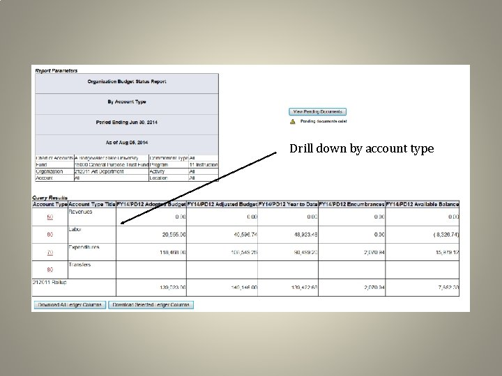 Drill down by account type