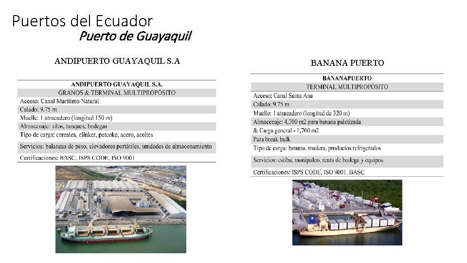 Puertos del Ecuador Puerto de Guayaquil ANDIPUERTO GUAYAQUIL S. A BANANA PUERTO