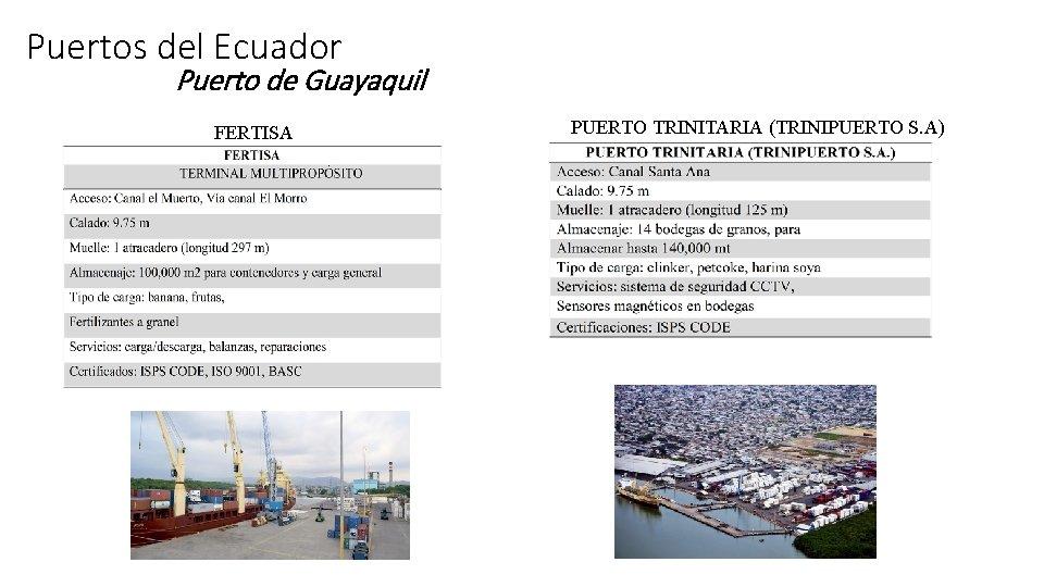 Puertos del Ecuador Puerto de Guayaquil FERTISA PUERTO TRINITARIA (TRINIPUERTO S. A)