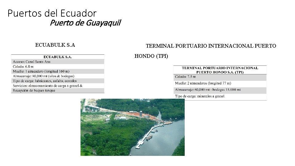 Puertos del Ecuador Puerto de Guayaquil ECUABULK S. A TERMINAL PORTUARIO INTERNACIONAL PUERTO HONDO