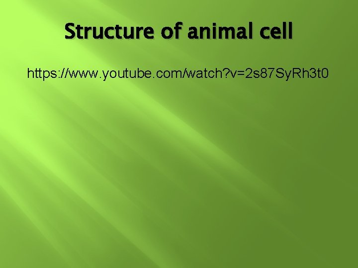 Structure of animal cell https: //www. youtube. com/watch? v=2 s 87 Sy. Rh 3