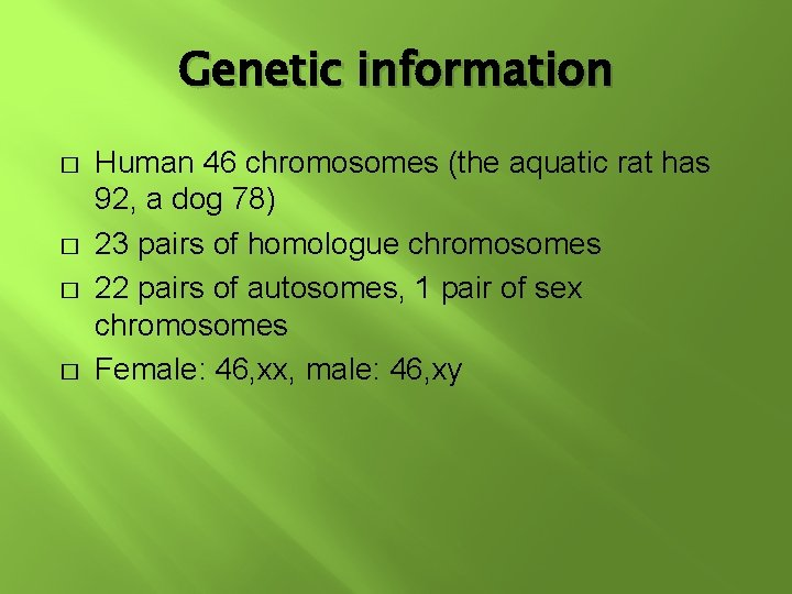 Genetic information � � Human 46 chromosomes (the aquatic rat has 92, a dog