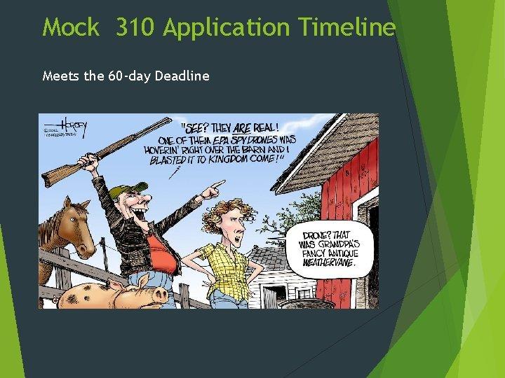 Mock 310 Application Timeline Meets the 60 -day Deadline