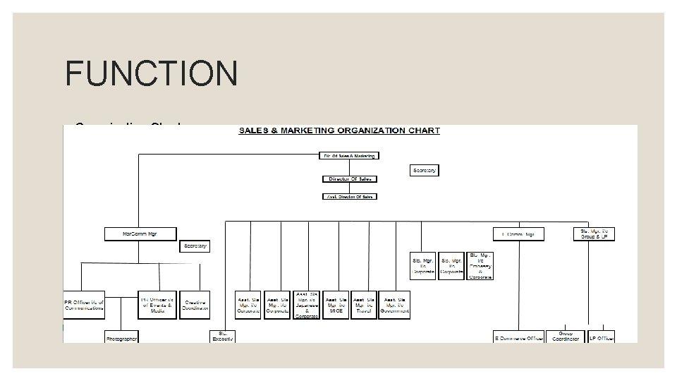 FUNCTION ◦ Organization Chart