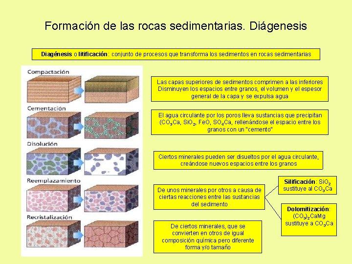 Formación de las rocas sedimentarias. Diágenesis Diagénesis o litificación: conjunto de procesos que transforma