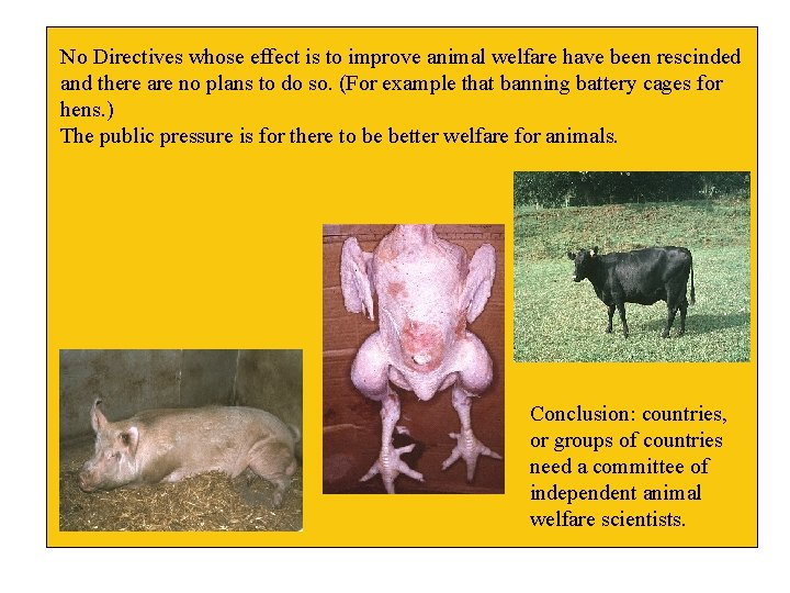 No Directives whose effect is to improve animal welfare have been rescinded and there