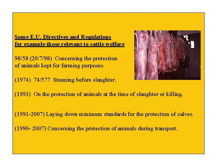 Some E. U. Directives and Regulations for example those relevant to cattle welfare 98/58