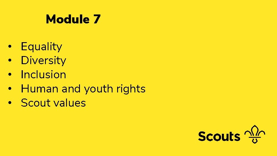 Module 7 • • • Equality Diversity Inclusion Human and youth rights Scout values