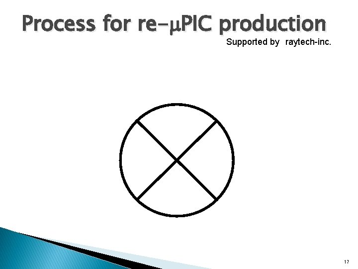 Process for re-m. PIC production Supported by raytech-inc. 17