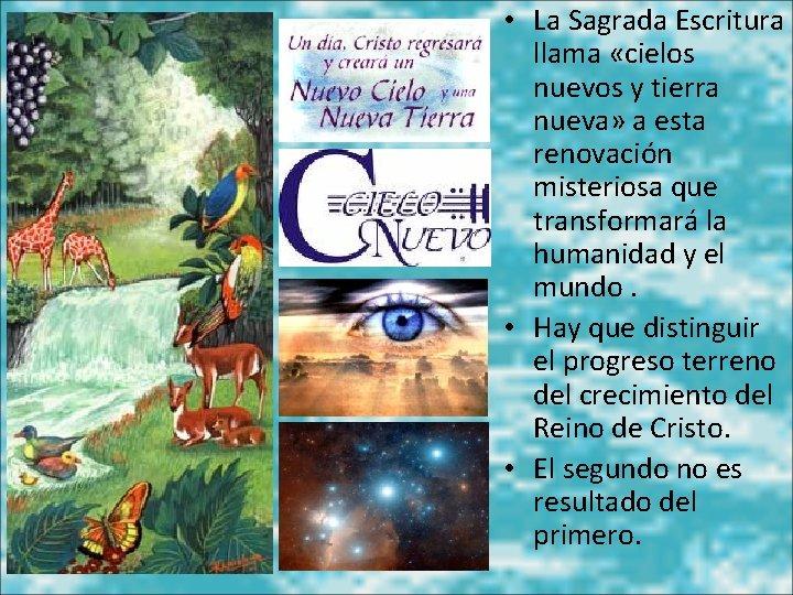 • La Sagrada Escritura llama «cielos nuevos y tierra nueva» a esta renovación