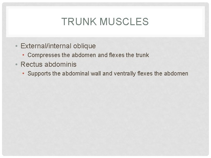 TRUNK MUSCLES • External/internal oblique • Compresses the abdomen and flexes the trunk •