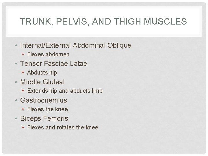 TRUNK, PELVIS, AND THIGH MUSCLES • Internal/External Abdominal Oblique • Flexes abdomen • Tensor