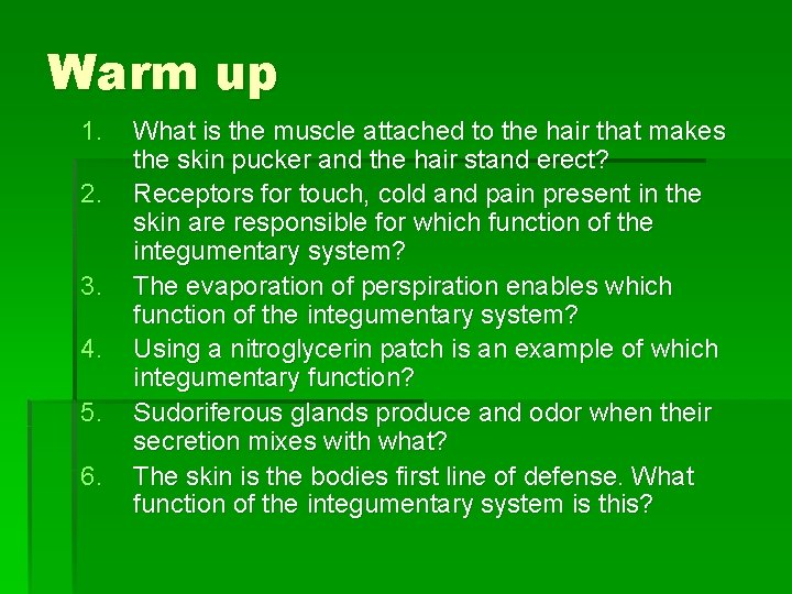 Warm up 1. 2. 3. 4. 5. 6. What is the muscle attached to