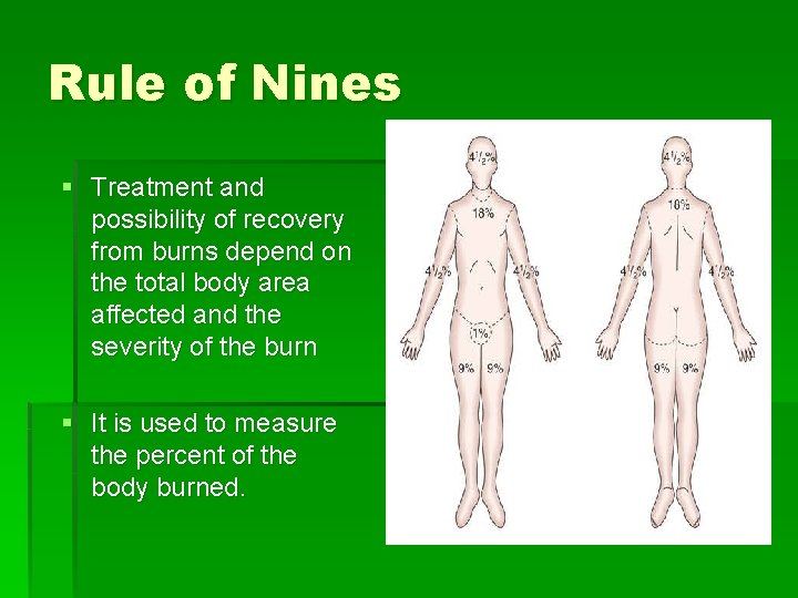 Rule of Nines § Treatment and possibility of recovery from burns depend on the