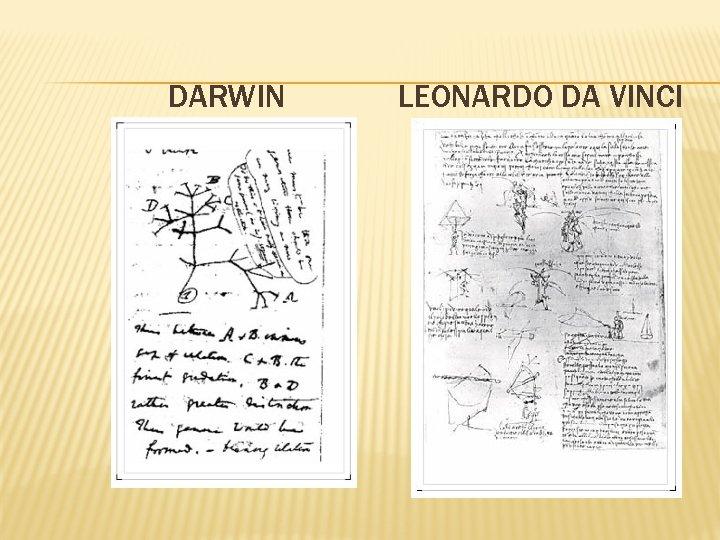DARWIN LEONARDO DA VINCI